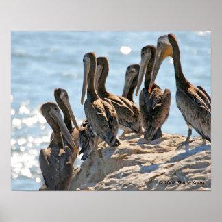 Pelican Rock Poster