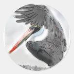 Pelican Salute Stickers