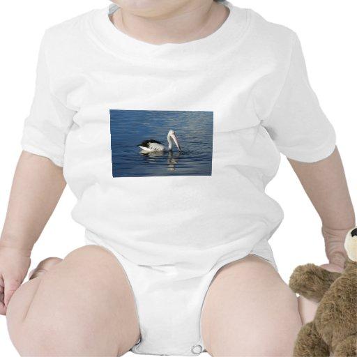 Pelican Shirts