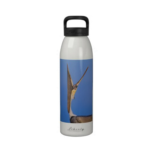 Pelican Stretch Water Bottles