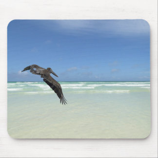 Pelican stupefies the ocean mouse pad