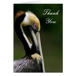 Pelican - Thank You Card