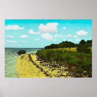Pelican Trail Beach at Honeymoon Island Poster