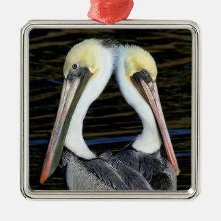 Pelican Twins Metal Ornament