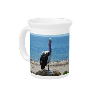 Pelican With The Look, Pitcher