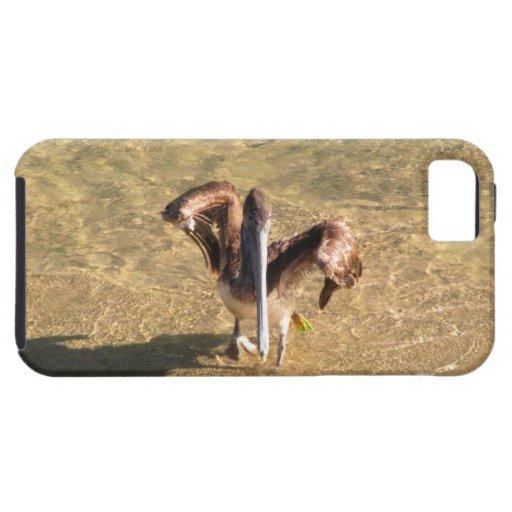 Pelícano Bathtime iPhone 5 Carcasas