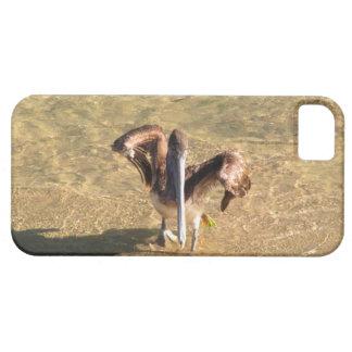 Pelícano Bathtime iPhone 5 Fundas