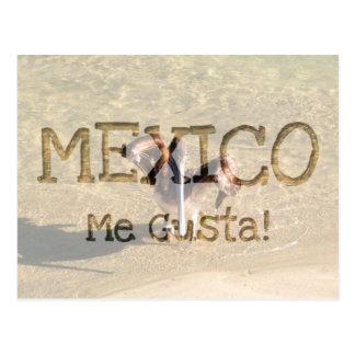 Pelícano Bathtime; Recuerdo de México Tarjetas Postales