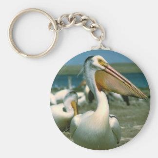 Pelícano blanco llavero redondo tipo pin
