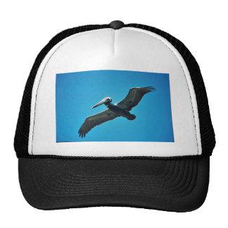 Pelícano de Brown en vuelo Gorros Bordados