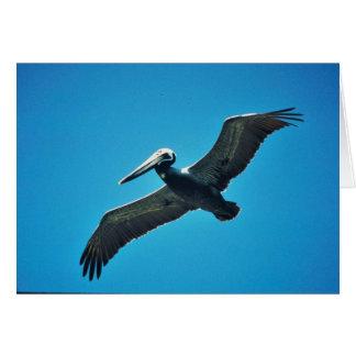 Pelícano de Brown en vuelo Tarjeta De Felicitación