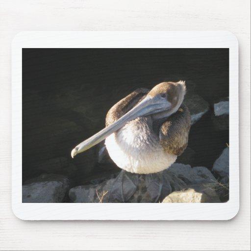 Pelícano de Brown Tapetes De Ratones
