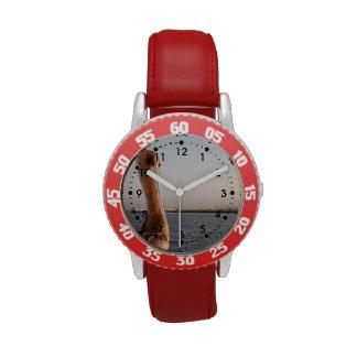 Pelícano de California Relojes De Mano