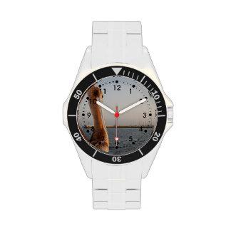 Pelícano de California Reloj