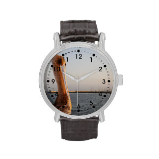 Pelícano de California Reloj De Mano