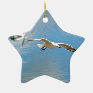 Pelícano de la gaviota en vuelo - en el agua adorno de cerámica en forma de estrella