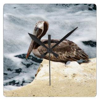 Pelícano de La Jolla, California Reloj Cuadrado