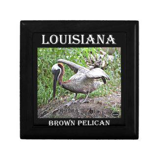 Pelícano de Luisiana Brown