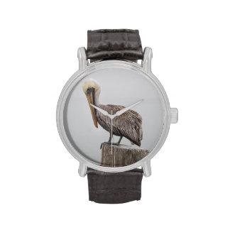 Pelícano de Luisiana Brown Relojes De Pulsera