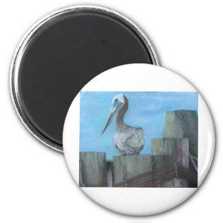 Pelícano del transbordador de Hatteras Imanes Para Frigoríficos