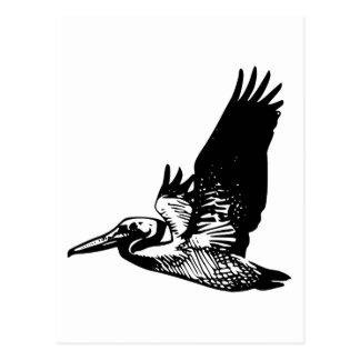 Pelícano del vuelo tarjetas postales