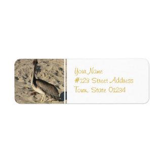 Pelícano en etiquetas de correo de la playa etiquetas de remite