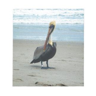 Pelícano en la Florida Libretas Para Notas