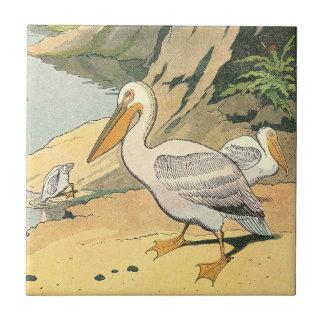 Pelícano en la playa azulejo cuadrado pequeño