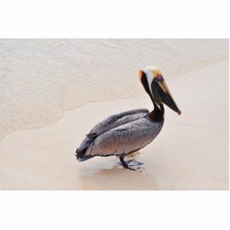 Pelícano en la playa fotoescultura vertical