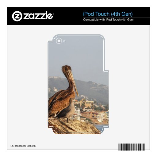 Pelícano en Laguna Beach iPod Touch 4G Skins