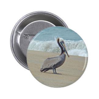 Pelícano en Outer Banks OBX NC Pin Redondo De 2 Pulgadas