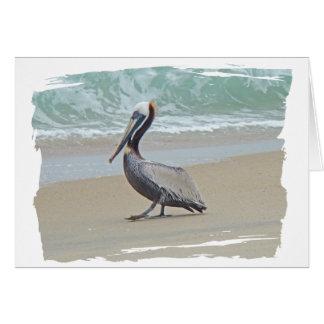Pelícano en Outer Banks OBX NC Felicitación