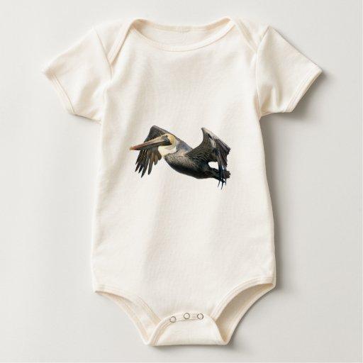 Pelícano en vuelo mameluco