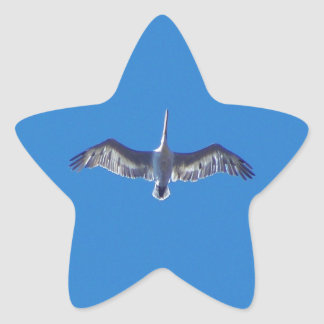 Pelícano en vuelo pegatina forma de estrella personalizadas