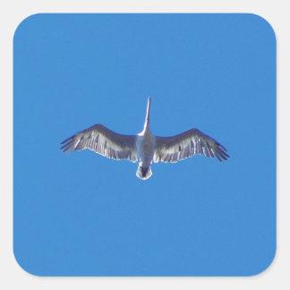 Pelícano en vuelo pegatina cuadrada