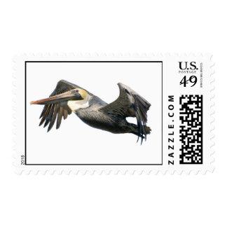 Pelícano en vuelo sellos postales