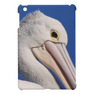 Pelícano iPad Mini Protectores