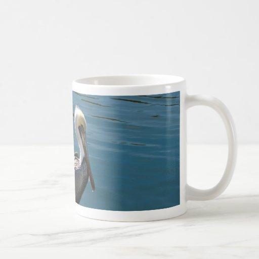 pelícano joven contra el agua en izquierda tazas de café