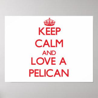 Pelícano Posters