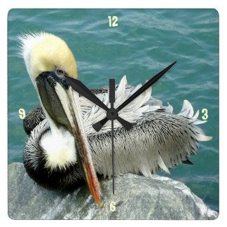 Pelícano que se sienta reloj cuadrado