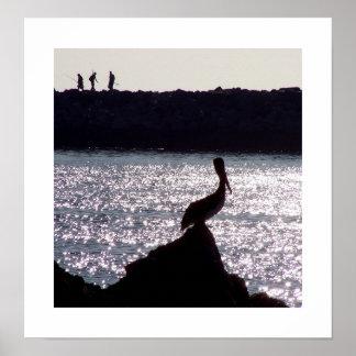 Pelícano y impresión de los pescadores impresiones