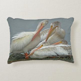 Pelícanos blancos americanos - erythrorhynchos del cojín decorativo