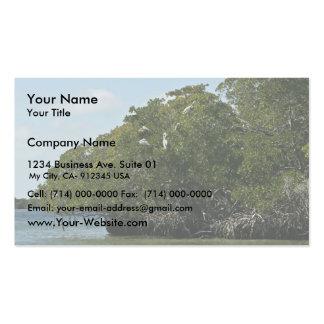 Pelícanos de Brown en árboles del mangle Plantilla De Tarjeta Personal