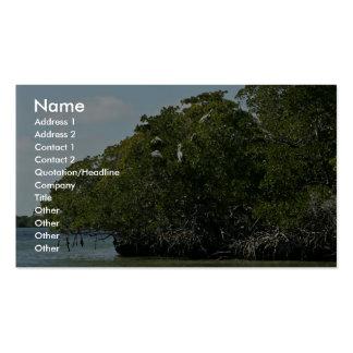 Pelícanos de Brown en árboles del mangle Plantillas De Tarjetas Personales