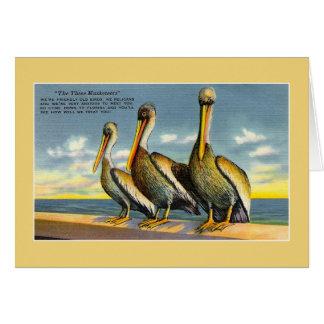 Pelícanos de los mosqueteros del vintage tres de tarjeta de felicitación