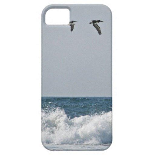 Pelícanos de Oregon iPhone 5 Carcasas