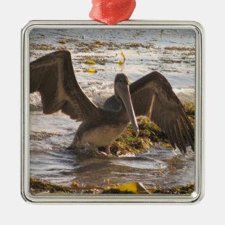 Pelícanos Ornamento De Reyes Magos