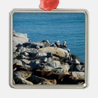 Pelícanos en las rocas ornamento para reyes magos