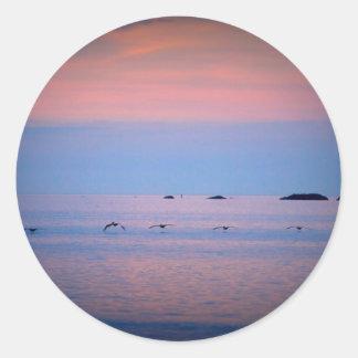 Pelícanos en vuelo pegatina redonda