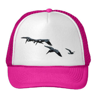 Pelícanos/gorra de la gaviota gorras de camionero